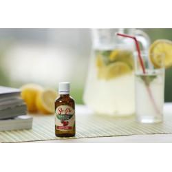 Îndulcitor din Stevia cu aromă de menta pentru limonada